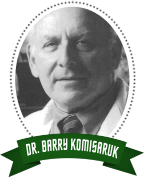 Dr.-Barry-Komisaruk
